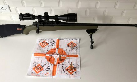 Custom Problem Solving and Zeroing Service